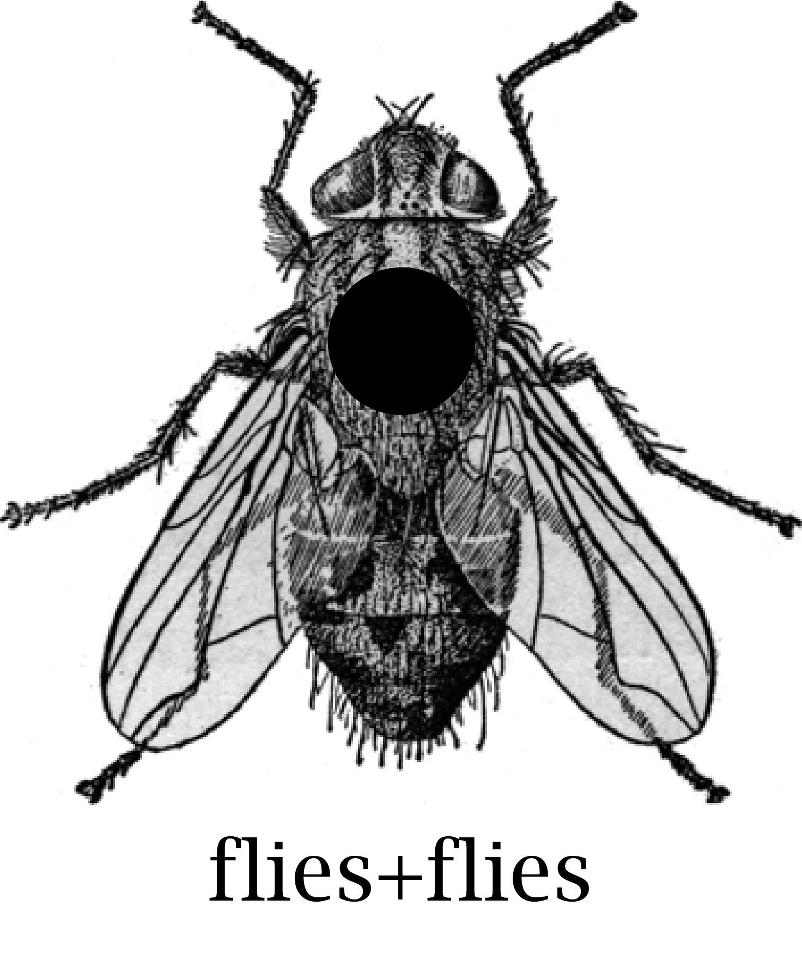 flies+flies-logo